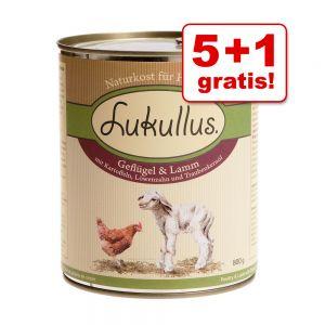 lukullus_gemischtes_probierpaket_800g_5_1_7