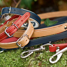 Schecker.de: 10% Rabatt auf Halsbänder und Leinen für Hunde
